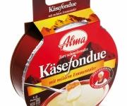 produkte_lebensmittelverpackung_fondue_alma